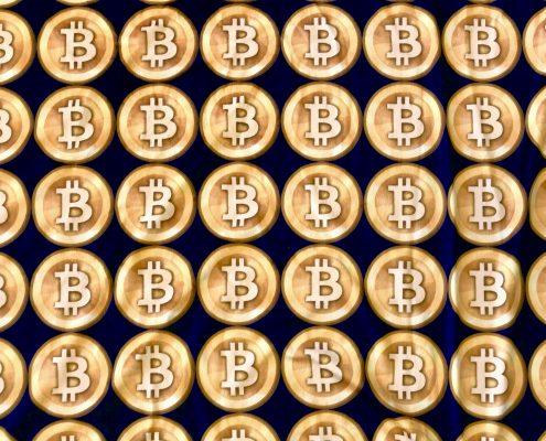 Bitcoin jacket